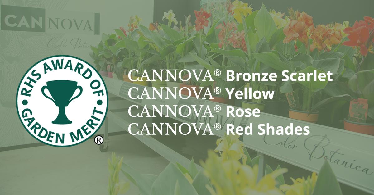 Award of Garden Merit Cannova