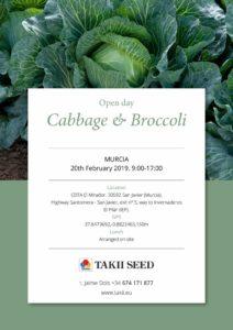 Broccoli Cabbage Murcia